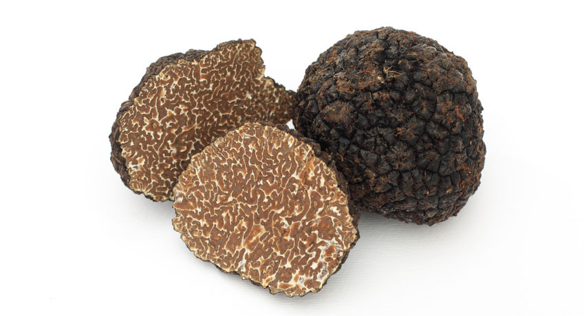 fall black truffle