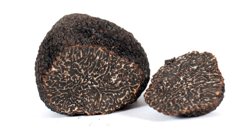 winter black truffle cropped